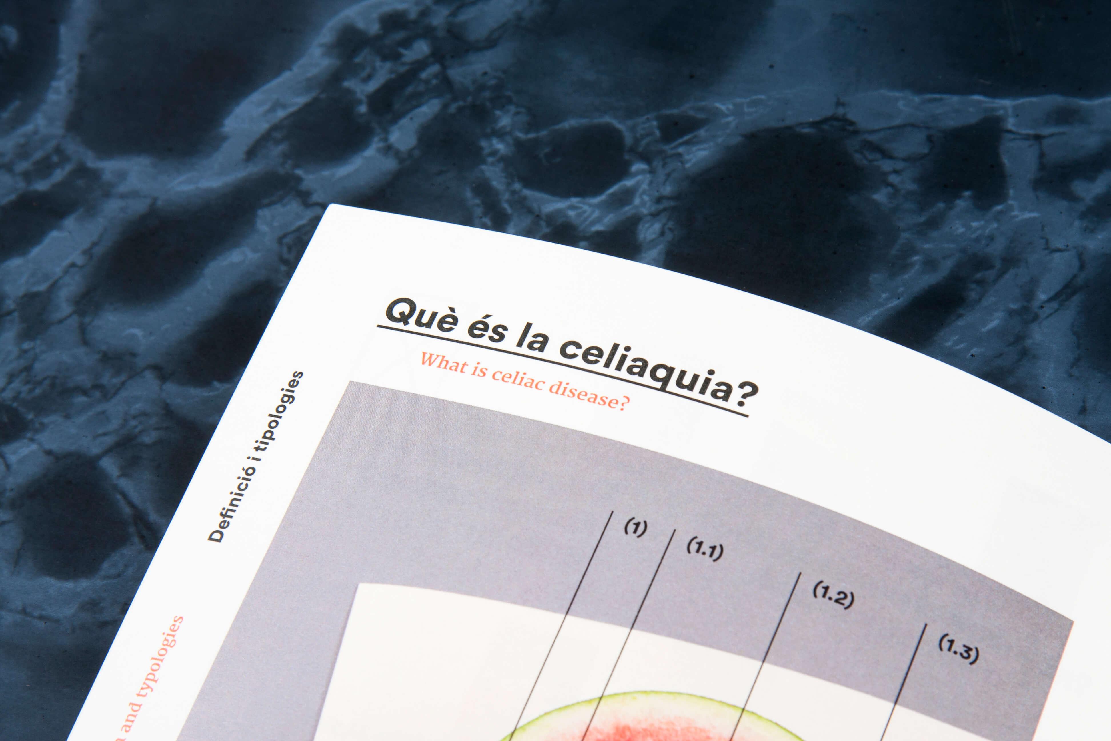 disseny publicació editorial